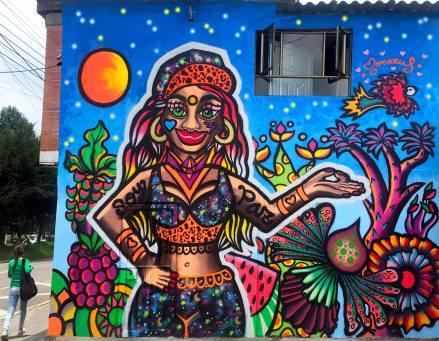 Murales Buenos Aires, Muralismo