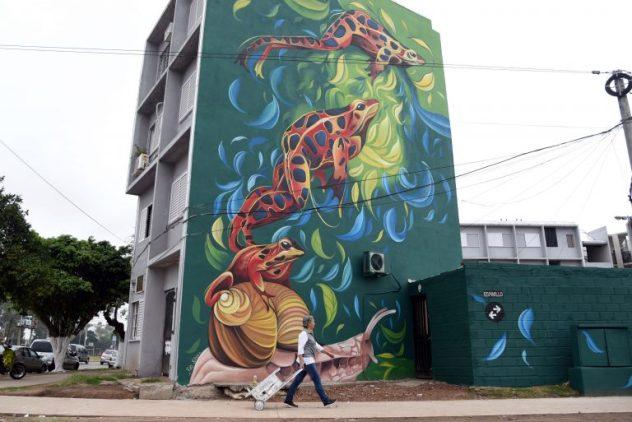street art, muralismo